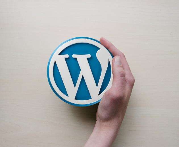 Should I update my Wordpress site?